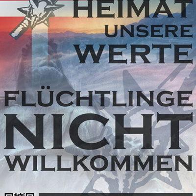 Mit diesen Plakaten versuchen die netten Damen und Herren der PNOS in der Ostschweiz auf Stimmenfang zu gehen.